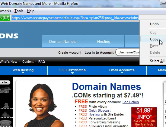 Domain Reseller Storefront address